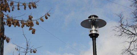 Парковые светильники в г. Зеленоград